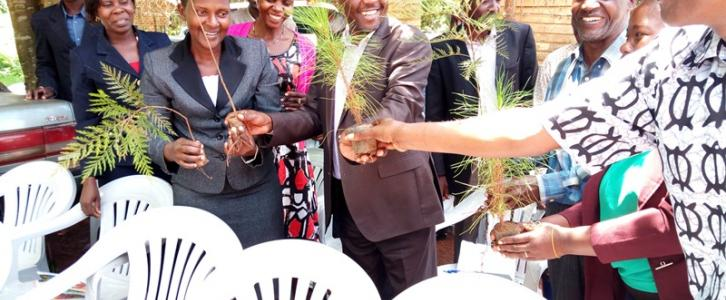 District Chairperson Distributing Tree Seedlings to Head Teachers